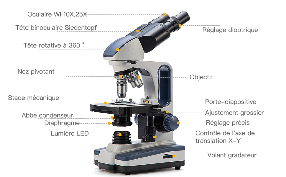 110V-220V Swift Optical M10DB-MP Digital Siedentopf Binocular Compound Microscope Multi-Phase Condenser LED Illumination Darkfield Brightfield Multi-Phase Objectives 40x-1000x Magnification Include Phase-Contrast WF10x Eyepieces Mechanical Stage