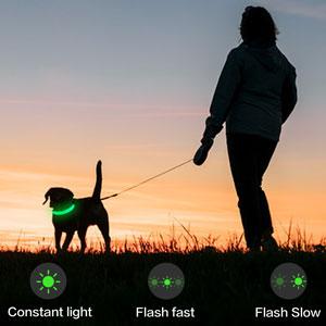 Dog Flashing Light Up Collar