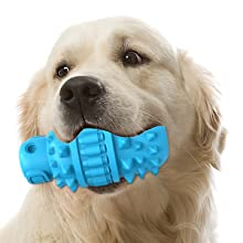 Durable, Tough, Suitable For Many Dogs!