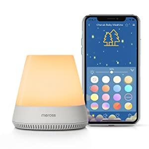 Adjustable Night Light Brightness and Color