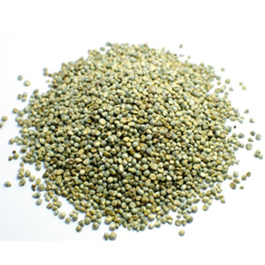 Pearl millet for reducing wrinkles and fine lines