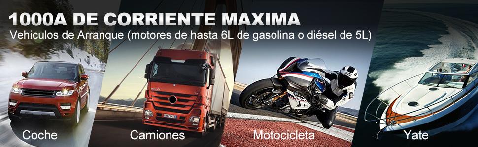 Gas 6L y 5L Diesel