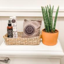 bathroom deodorizer poops restroom stink stinky smoke baking soda fridge pellets best weed ionizer