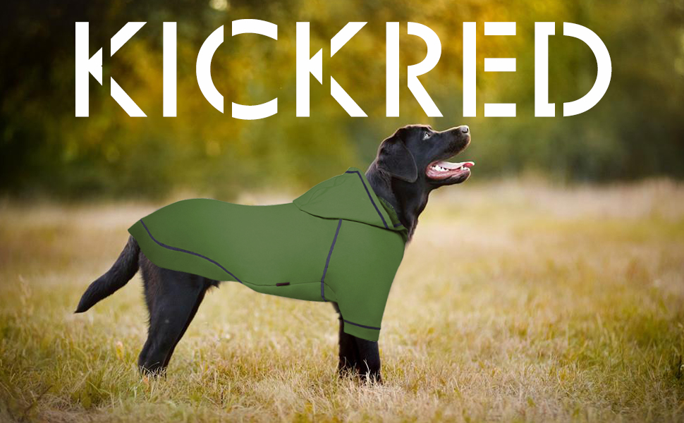 Kickred Basic Dog Hoodie Sweatshirts