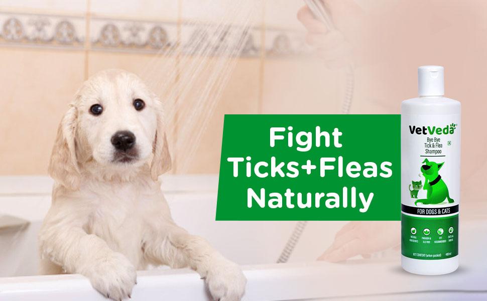 tick and fleas shampoo u