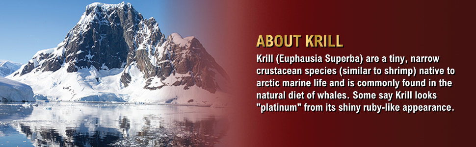 about krill