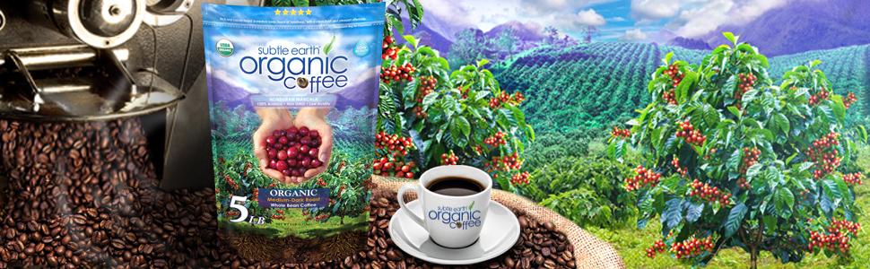 SEO Organcic Coffee Don Pablo Beans Arabica