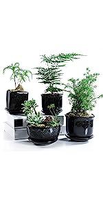 SUN-E 4.7 Inch Black Glaze Ceramic Succulent/Cactus Plant Pot Set with Tray