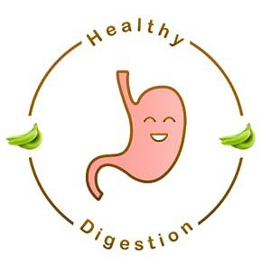 Gut digestion healthy gluten free vegan multigrain