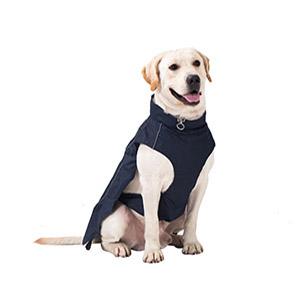 Dog Raincoats for Large Dogs