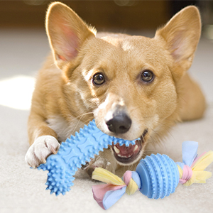dog toys for small toys