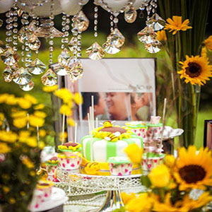 Sunflower party decor