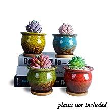 4.5 Inch Succulent Pots