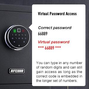 Virtual Password Technology
