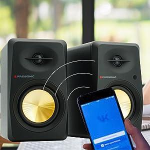 Bluetooth Bookshelf Speaker