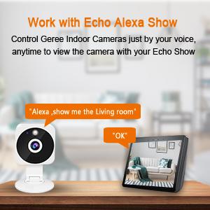 security camera work with Alexa