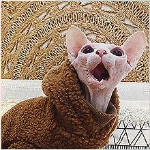 holloween gloves night fury pet dogs bella laser stunt skirt kat collar medium foe black/red