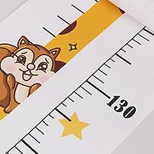 height wall chart