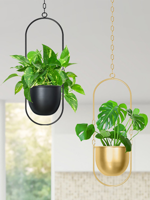 hanging planters for indoor plants with pot hanging wall planters for indoor plants