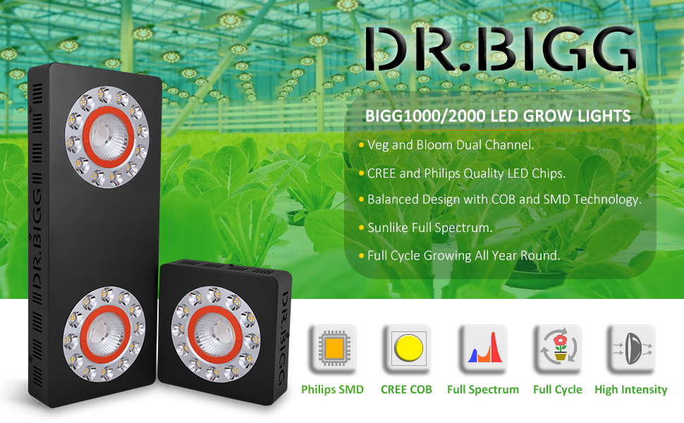 dr,bigg 2000w led grow light banner