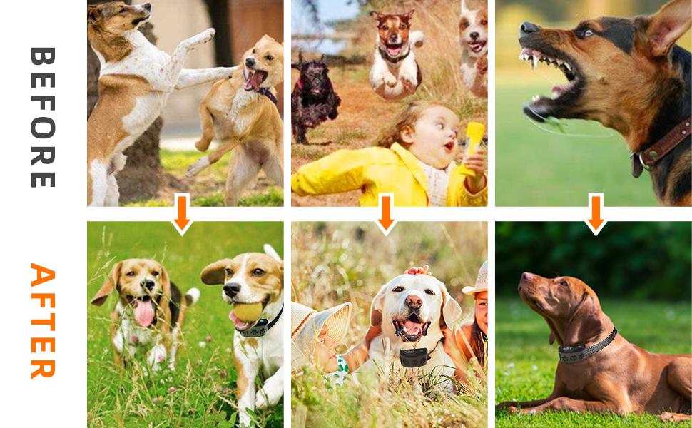 stop bark control device