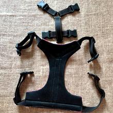 Adjustable Bulldog Harness