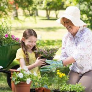 FAIRY GARDEN -  fairy garden accessories, miniatures, supplies, fairy garden, gift, kids