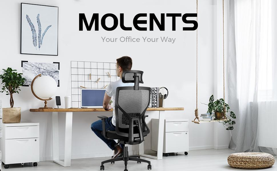 MOLENTS OFFICE LOGO