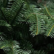 Unlit Christmas Tree