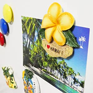 ハワイ お土産 マグネット 冷蔵庫 ハワイアン 雑貨