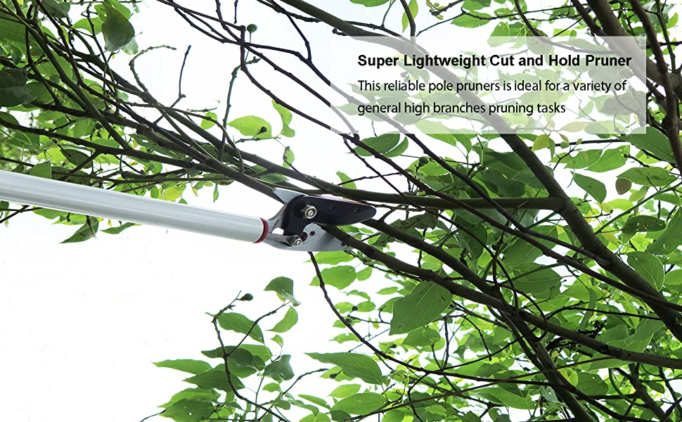 Super Lightweight Cut and Hold Pruner This reliable pole pruners is ideal for a variety