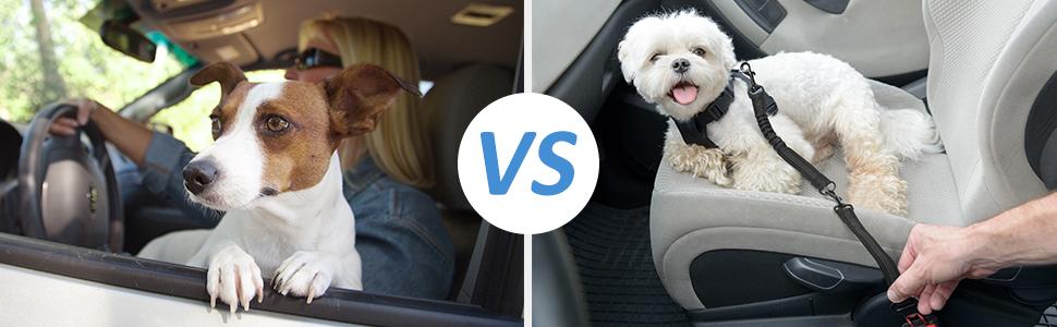 OMORC Cinturón de Seguridad de Coche para Perros, Desmontable 2 en ...