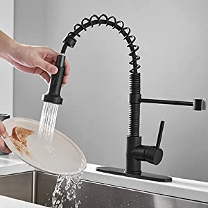 Black Pull Out Kitchen Faucet