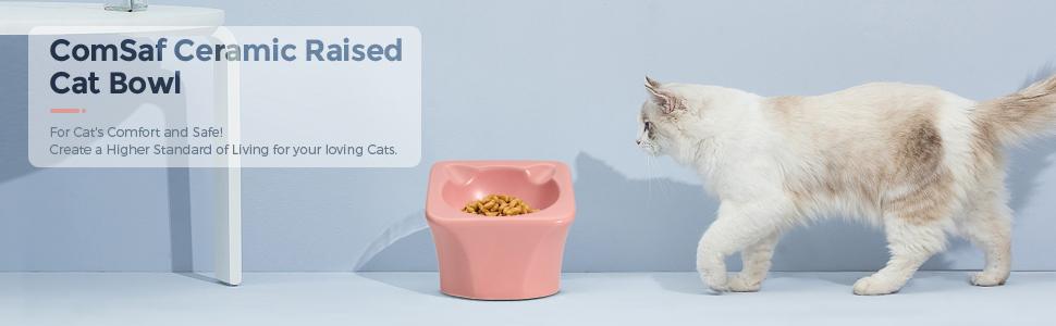 ceramic cat food and water bowl