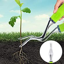 beginner gardening kit
