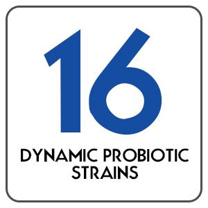 16 Dynamic Probiotic Strains