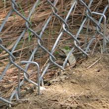 Chicken Net Fencing
