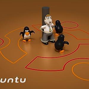 Linux Ubuntu Boot Drive Disco Dingo 19.04