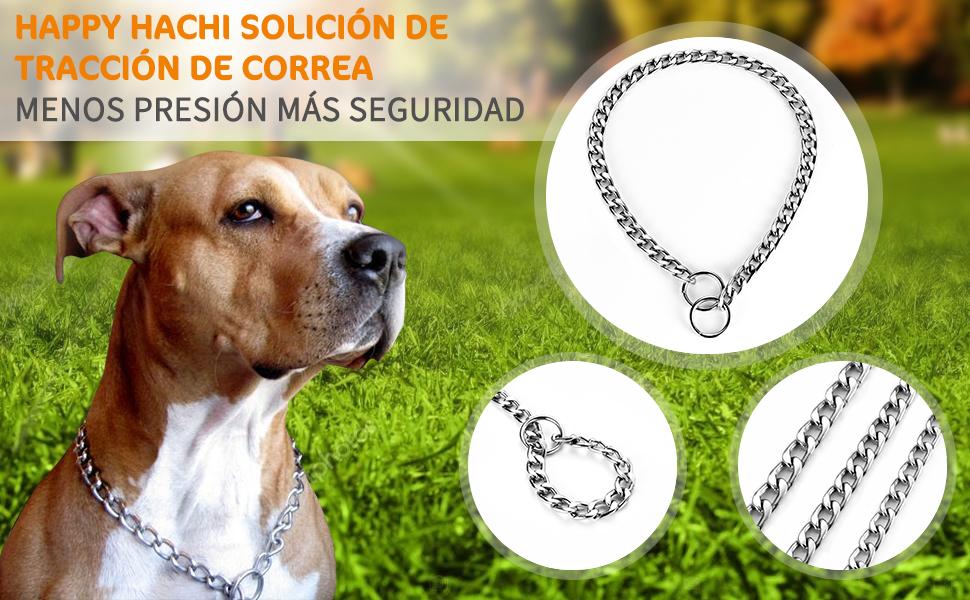 HAPPY HACHI Collar Consistent para Perros Collares de Acero Cadena ...
