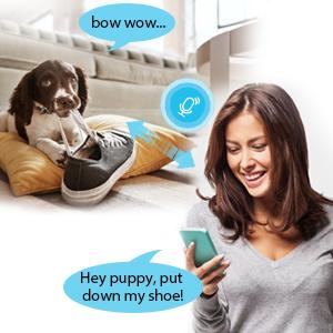 two-way audio pet camera