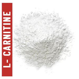 L carnitine Weight Management Fat management Endurance Energy Supplement boost strength stamina