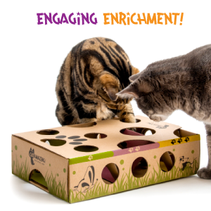Enrichment Cat Toy Mental stimulation and engagement cat toy for cats to play by themselves