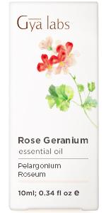 rose geranikum