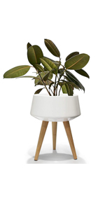 large ceramic planter with wooden stand
