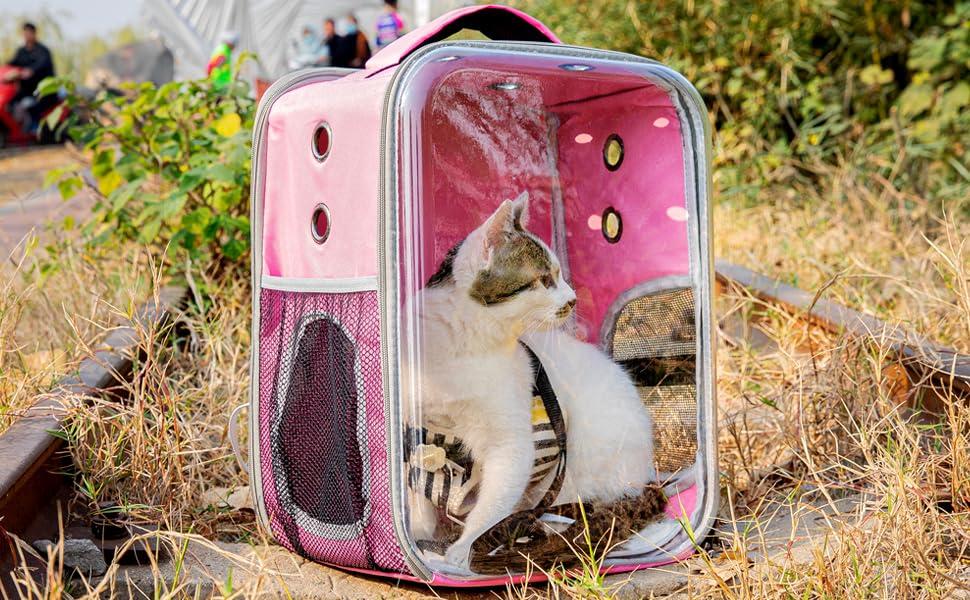 pink cat backpack carrier