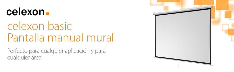 Celexon Basic Pantalla manual mural 240 x 240, formato 1:1: Amazon ...