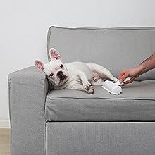 BluePet RolloTollo Fusselbürste Flusenroller Tierhaarbürste Tierhaare entfernen Flusen Hunde Katzen