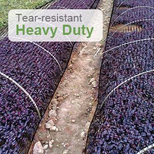 Heavy-duty Garden Netting