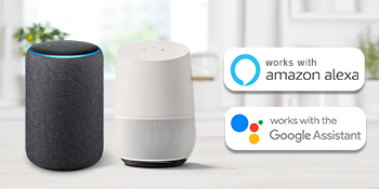 works with alexa google home