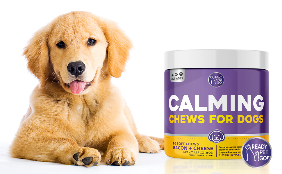 Calming chews treats dogs